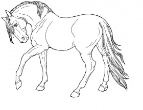 This is a picture of Refreshing breyer horse coloring pages