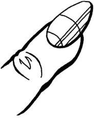 Human Anatomy Finger And Nail Coloring Pages : Bulk Color