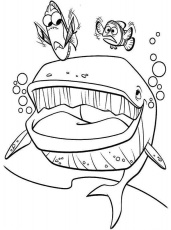 Dory and Marlin Meet the Whale in Finding Nemo Coloring Page ...