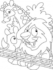 related coloring pages 1000 images about zoo animals preschool on pinterest