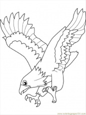 Coloring Pages Eagle4 (Birds > Eagle) - free printable coloring