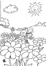 INSECT coloring pages - Small Spider