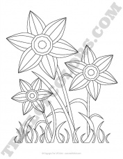 Daffodils Coloring Page for Kids - free printable - Trail Of Colors