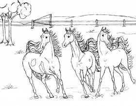 Horse Coloring Pages | Pencils-Pixels