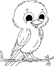 Coloring Pages To Print Robin Bird For Kids Tweety Printable Christmas –  Approachingtheelephant