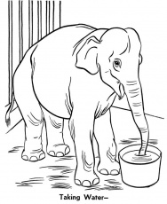 Zoo animal coloring page | Giraffe Exhibit | gifties? | Pinterest ...