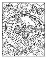 Free butterfly - Butterflies & insects Adult Coloring Pages