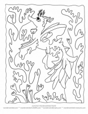 Gallery For > Kelp Coloring Pages