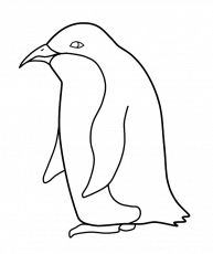 penguin pictures for kids