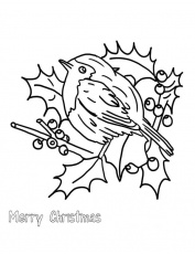 Christmas Floral Arrangements And Robin Bird Coloring Page - Download &  Print Online Coloring Pages for Free | Color Nimbus