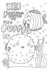 childrens adult colouring books gina shord illustration - Pout Pout Fish Coloring Page