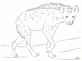 laughing hyena coloring pages