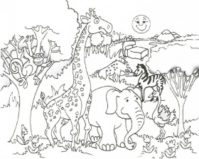 Wild Coloring Pages Wild Hog Coloring Pages Wild Things 230213