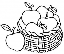 fruit basket coloring page