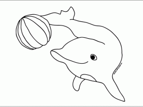 Baby Dolphin Coloring Pages Coloring Pages For Adults Coloring