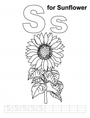sunflower coloring sheet