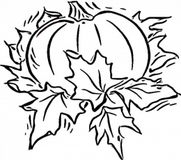 Blank Coloring Page Coloring Home