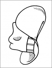 cowboy hats coloring pages