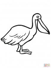 Pelicans coloring pages | Free Coloring Pages