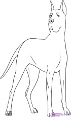 1024x0 great dane coloring pages 49 free printable for Great dane coloring pages