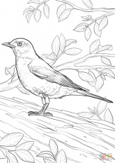 Add Free Games Printable Robin Bird Coloring Pages Free Printable Castle Coloring  Pages Printable Robin Bird Coloring Pages printable english worksheets for  kids addition numeracy sheets numeracy sheets 3rd grade problem solving