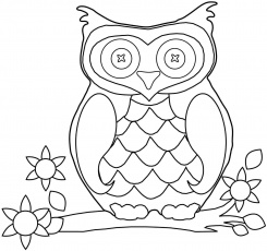 Printable Owl Coloring Pages For Kids Owls adult