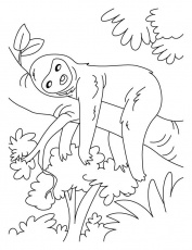 Lazy sloth coloring pages | Download Free Lazy sloth coloring