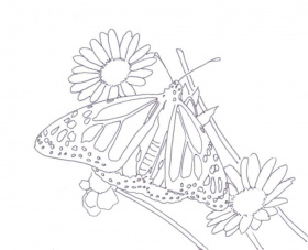Monarch Butterfly Coloring Page - Free Coloring Pages For KidsFree