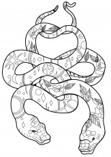 Two Snakes with patterns - Snakes Adult Coloring Pages