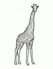 Giraffe Coloring Pages