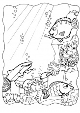 Coloring Pages Of Fish For Kids | download free printable coloring