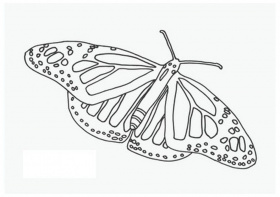 Amazing Mosaic Coloring Pages Printable For Your Student Ted