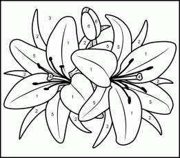 paint by number Colouring Pages (page 3)