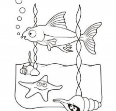 Sea Life Coloring Pages - HD Printable Coloring Pages
