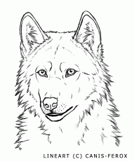 Wolf Face-- free lineart by Canis-ferox on deviantART
