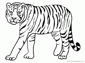Coloring Pages Of Wild Animals | Animal Coloring Pages | Kids