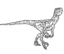 11 Pics of Jurassic Park Raptor Coloring Pages - Jurassic Park ...
