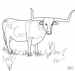 Bull Horn Coloring Page - Ð¡oloring Pages For All Ages