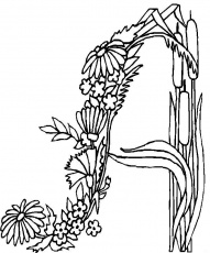 Alphabet Flowers coloring pages