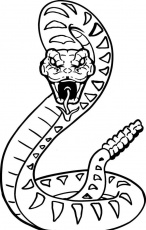 Rattlesnake Coloring Pages e1531692860244 | Snake coloring pages, Snake  drawing, Coloring pages