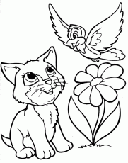 Coloring Pages Of Cute Animals Coloring Pages For Adults 114431