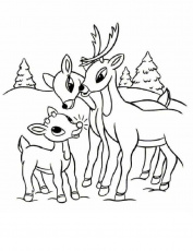 Print Rudolph Reindeer And Family Coloring Page or Download