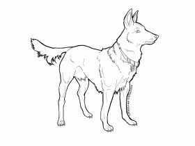 Australian Shepherd Coloring Page - Coloring Home