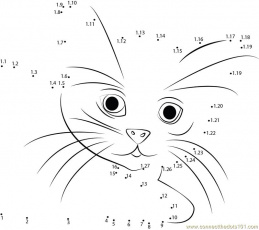 Cat In Shock dot to dot printable worksheet - Connect The Dots