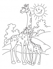 Giraffe Coloring Pages and Book | UniqueColoringPages