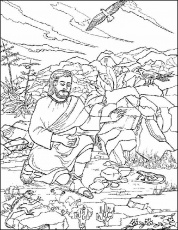Desert plants coloring pages other kids coloring pages for Desert plants coloring pages